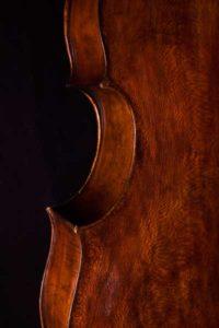 baroque violoncello sycamore back