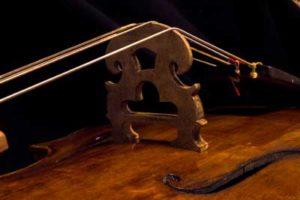 baroque cello bridge Turin