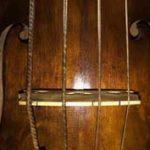 Violone gut C string