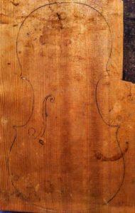 bear claw spruce violin top