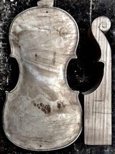 Lorenzo Ventepane violin