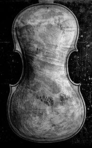 Ventepane violin back